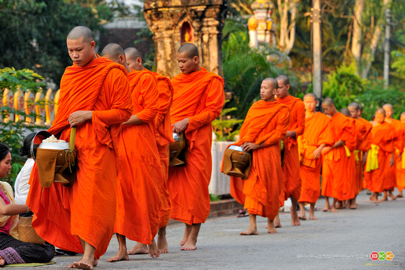 Buddhism: Religion, Philosophy, or Spirituality?